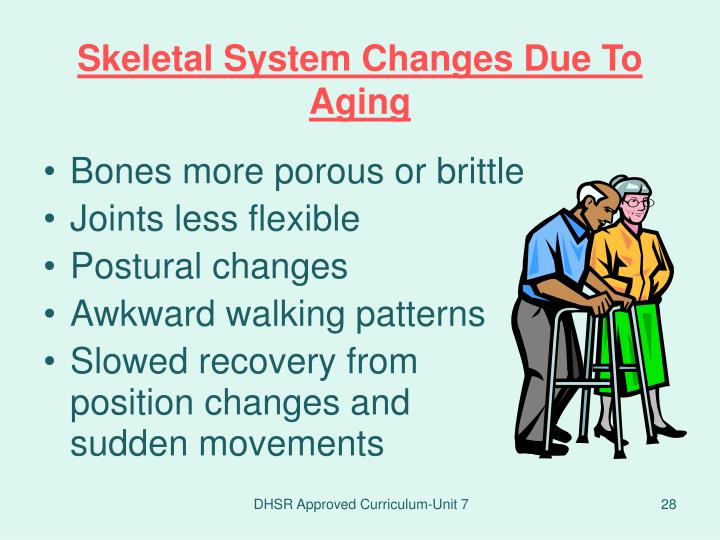 Skeletal System Changes Due To Aging