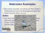 nebraska examples1
