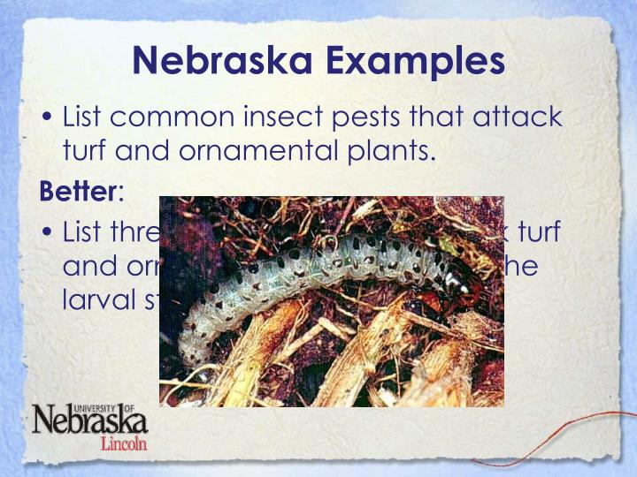 Nebraska Examples