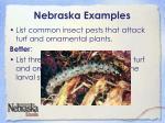 nebraska examples5
