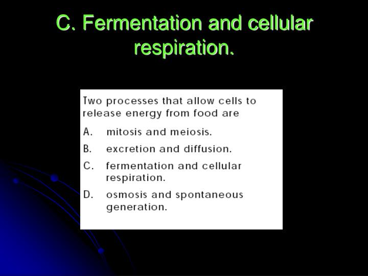 C. Fermentation and cellular respiration.