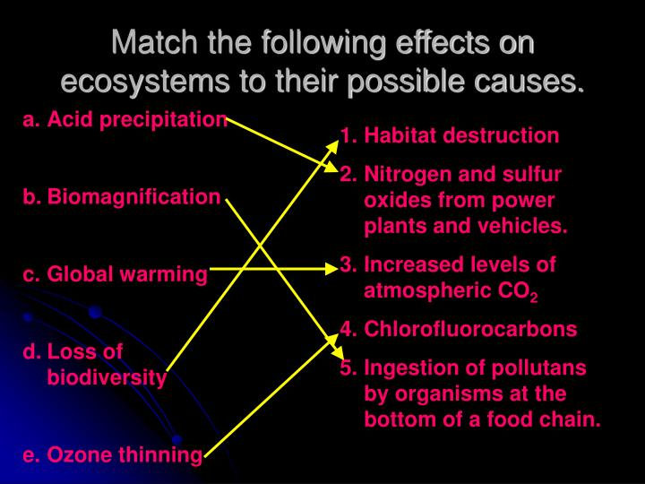 Match the following effects on ecosystems to their possible causes.