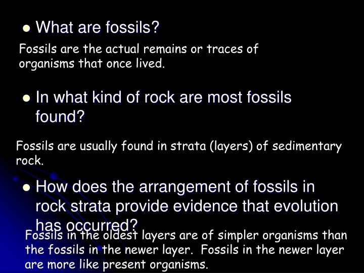 Fossils are the actual remains or traces of organisms that once lived.