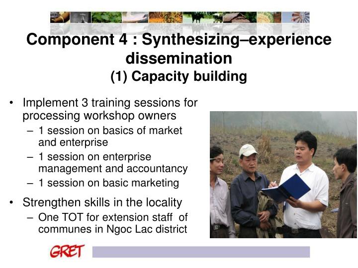 Component 4 : Synthesizing–experience dissemination