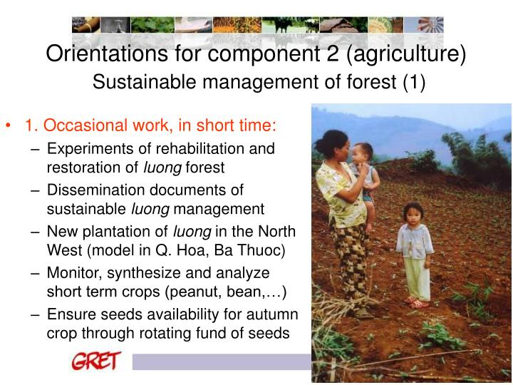 Orientations for component 2 (agriculture)