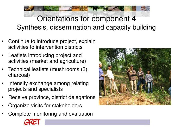 Orientations for component 4