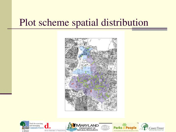 Plot scheme spatial distribution