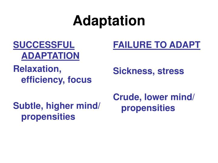 SUCCESSFUL ADAPTATION