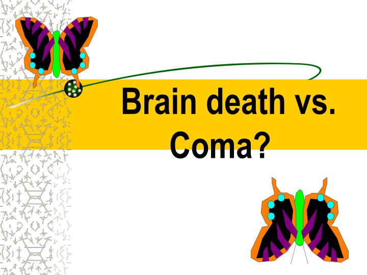 Brain death vs. Coma?