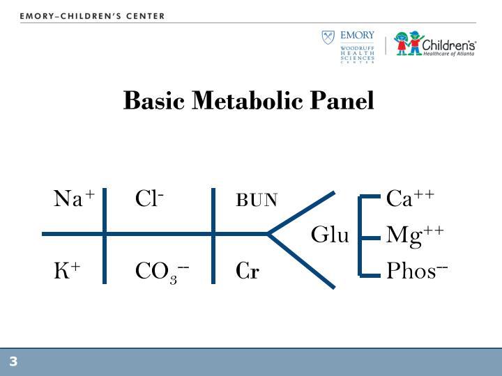 Basic Metabolic Panel