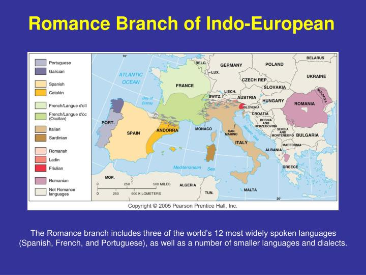 Romance Branch of Indo-European
