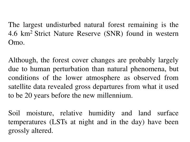 The largest undisturbed natural forest remaining is the 4.6 km