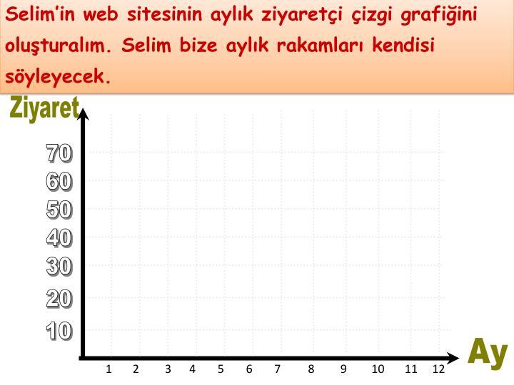 Selim'in web sitesinin aylık ziyaretçi çizgi grafiğini oluşturalım. Selim bize aylık rakamları kendisi söyleyecek.