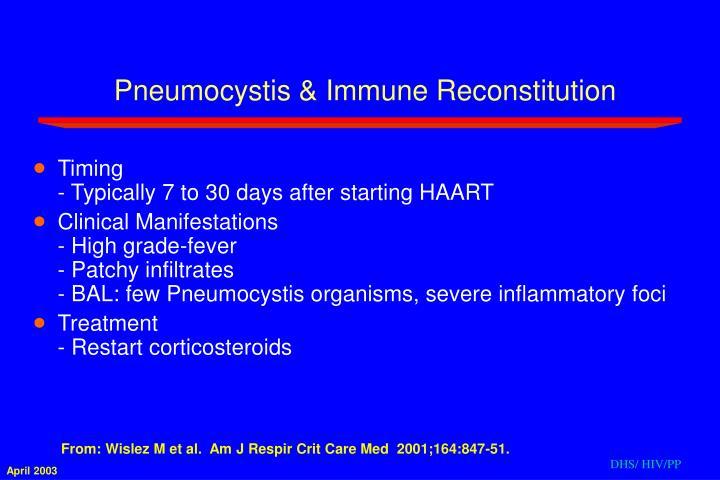 Pneumocystis & Immune Reconstitution