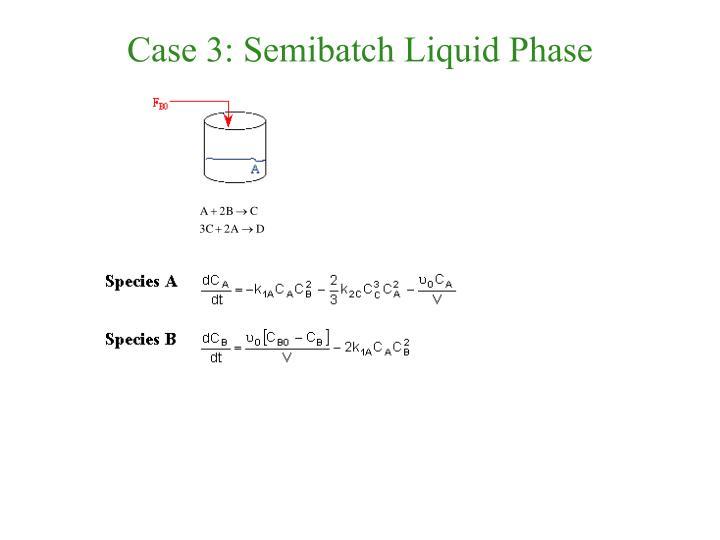 Case 3: Semibatch Liquid Phase