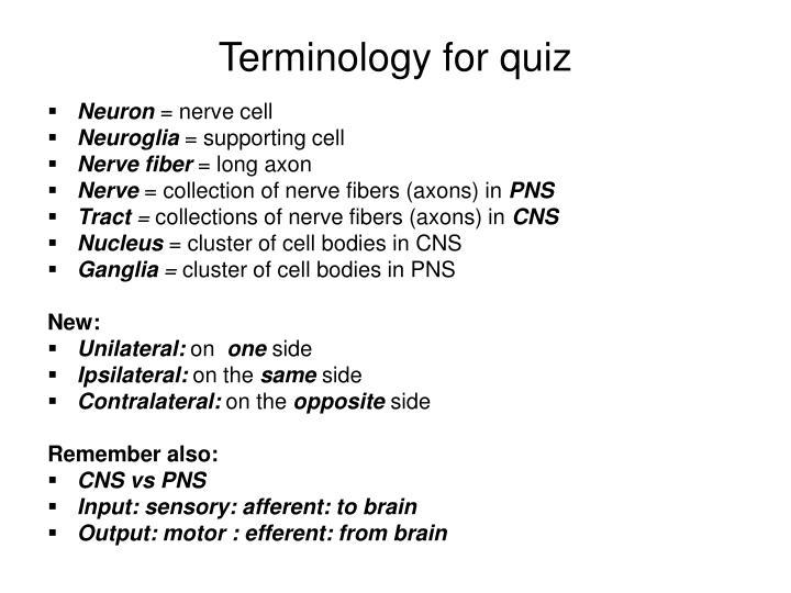 Terminology for quiz