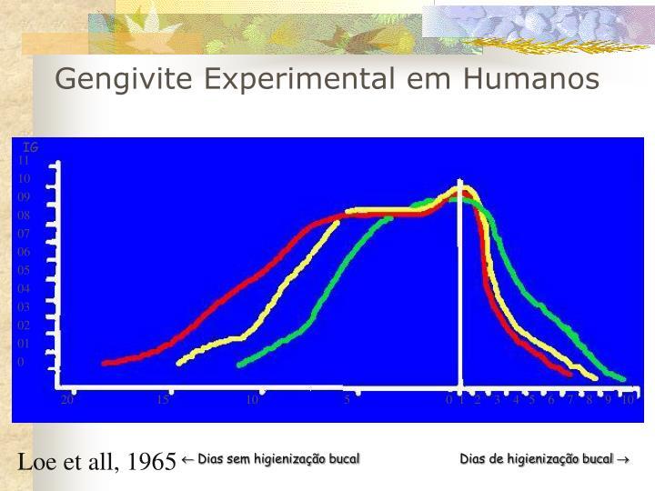 Gengivite Experimental em Humanos