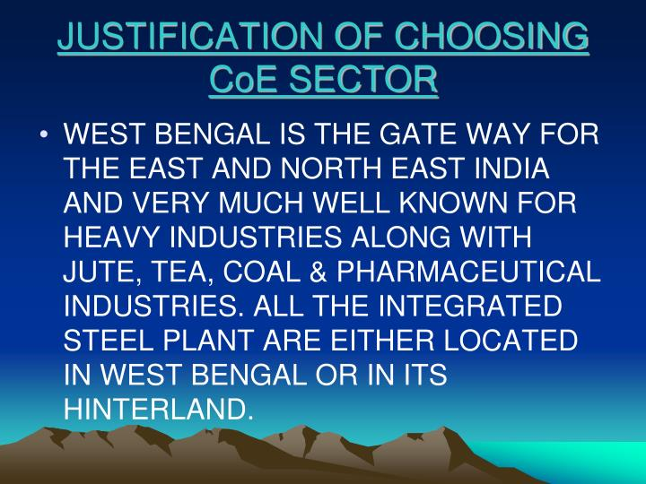 JUSTIFICATION OF CHOOSING CoE SECTOR