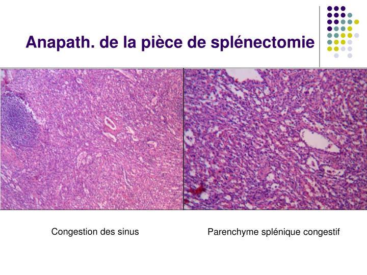 Anapath. de la pièce de splénectomie