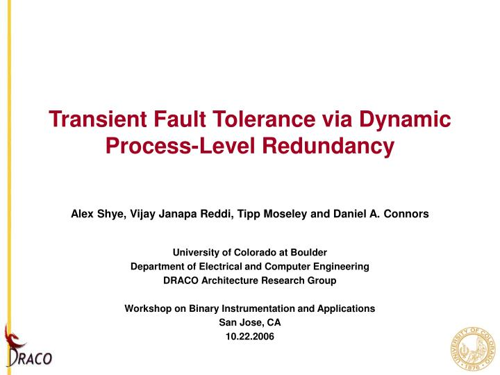 Transient fault tolerance via dynamic process level redundancy