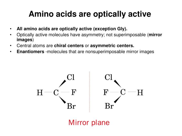 Amino acids are optically active
