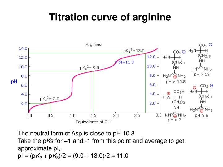 Titration curve of arginine