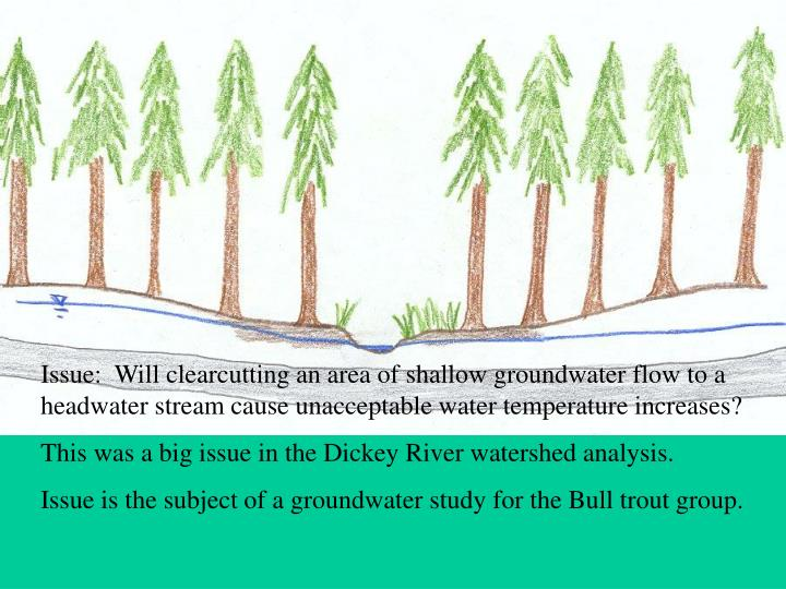 Issue:  Will clearcutting an area of shallow groundwater flow to a headwater stream cause unacceptable water temperature increases?