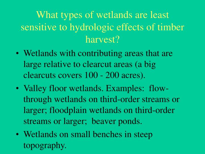 What types of wetlands are least sensitive to hydrologic effects of timber harvest?