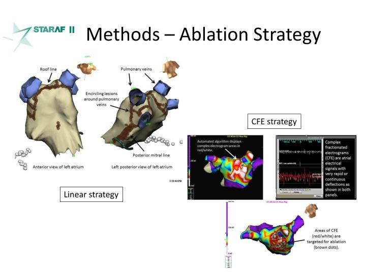 Methods – Ablation Strategy