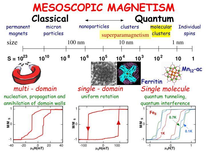 MESOSCOPIC MAGNETISM
