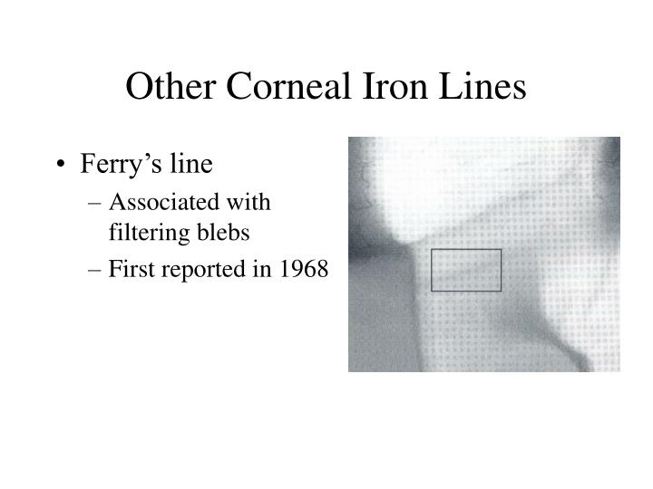 Other Corneal Iron Lines