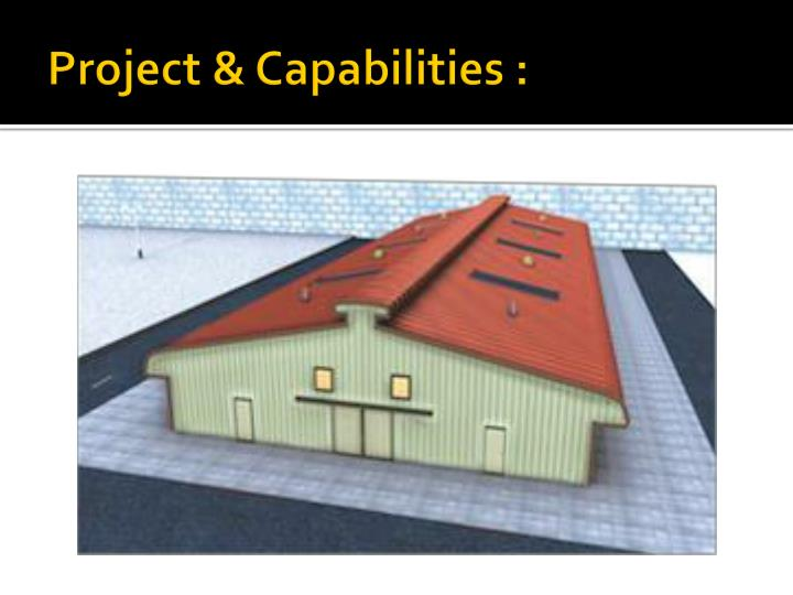 Project & Capabilities :