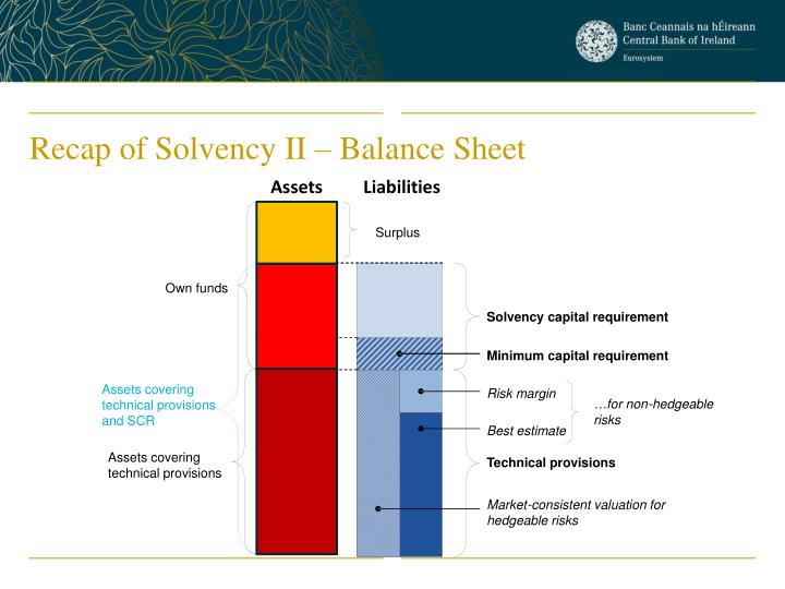 Solvency capital requirement