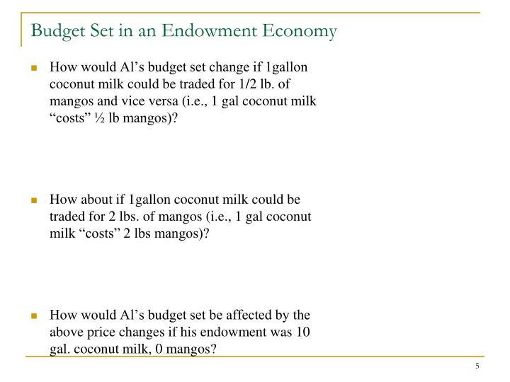 Budget Set in an Endowment Economy