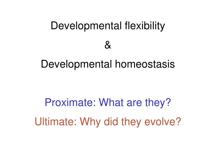 Developmental flexibility