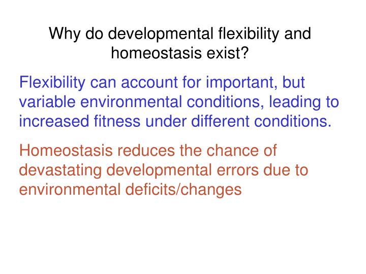 Why do developmental flexibility and homeostasis exist?