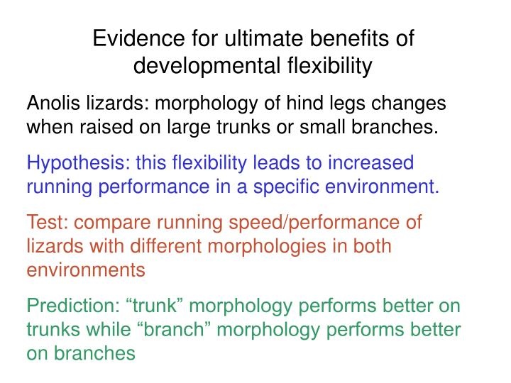 Evidence for ultimate benefits of developmental flexibility