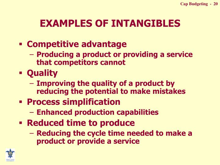 EXAMPLES OF INTANGIBLES
