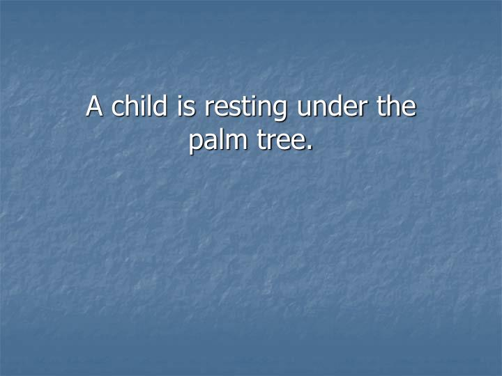 A child is resting under the palm tree.
