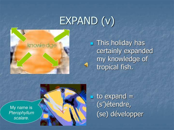 EXPAND (v)