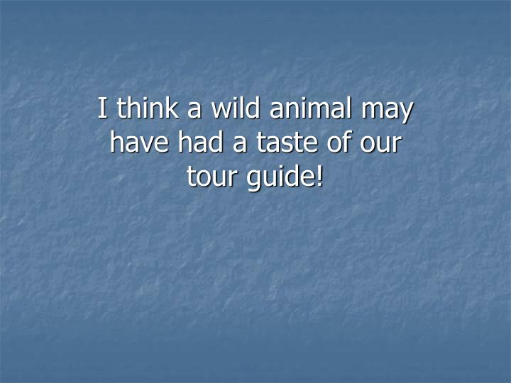 I think a wild animal may have had a taste of our tour guide!