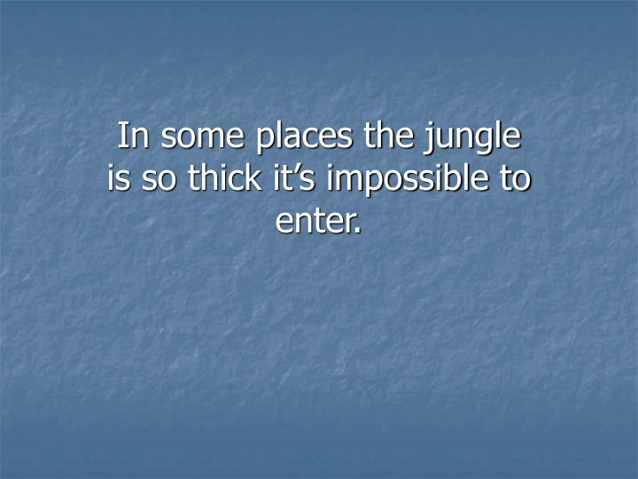 In some places the jungle is so thick it's impossible to enter.