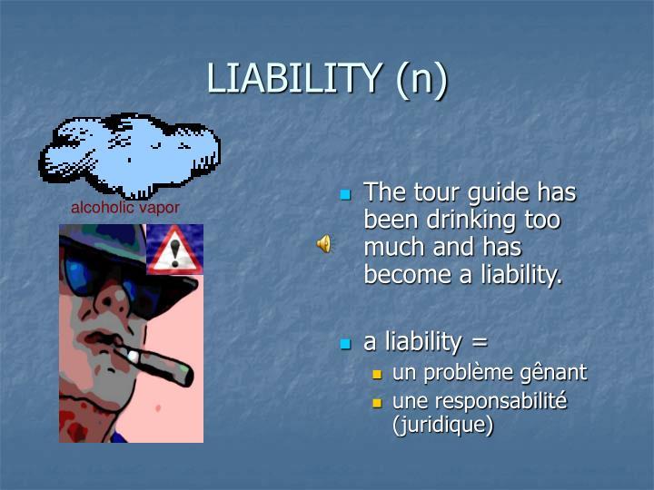 LIABILITY (n)
