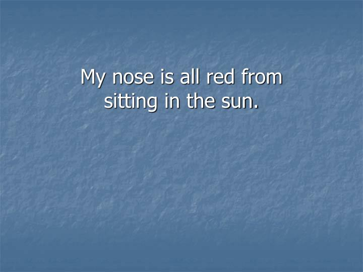 My nose is all red from sitting in the sun.