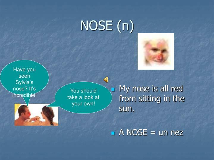 NOSE (n)