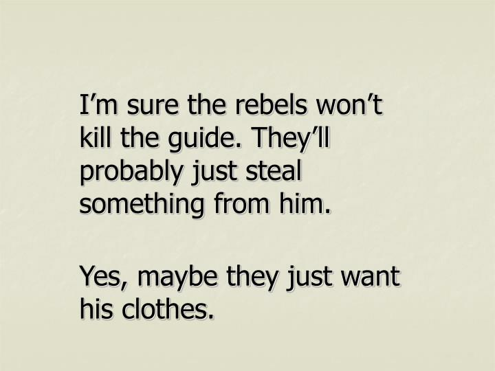 I'm sure the rebels won't kill the guide. They'll probably just steal something from him.