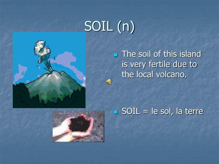 SOIL (n)
