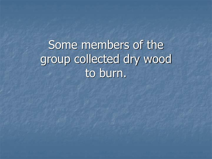 Some members of the group collected dry wood to burn.