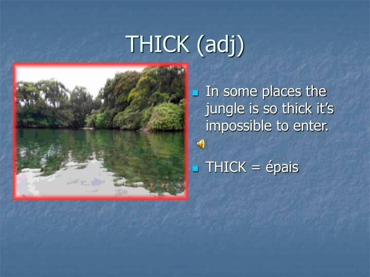 THICK (adj)