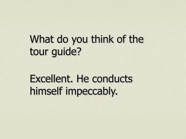 What do you think of the tour guide?